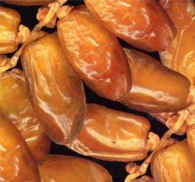 dates_degglet_nour_tunisie